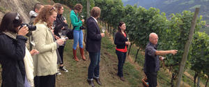 master_of_wine_in_sdtirol