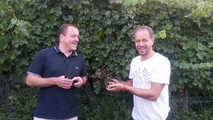 7000 Flaschen Brunello vom Jahrhundertjahrgang 2015 in Gefahr!