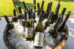 """""""Spatium Pinot Blanc 2016"""" mit neuem Teilnehmerrekord"""